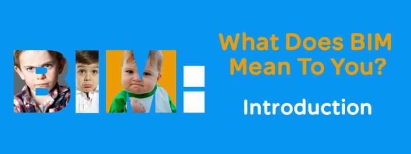 What Does BIM Mean
