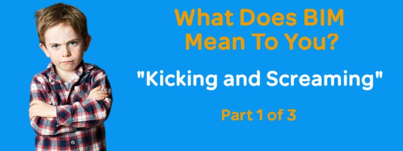 What does bim mean to you - kicking and screaming